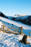 Winter in the Newlands Valley Royalty Free Stock Photo