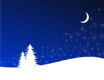 Winter night. And snow-covered fir-trees Royalty Free Stock Images