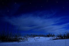 Winter night Royalty Free Stock Photography