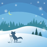 Winter night. Background with winter landscape and fox on the ski Stock Photography