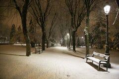 Winter Night in Brasov royalty free stock photo