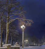 Winter in the night city Stock Photo