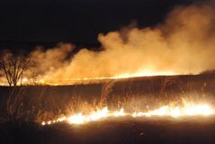 A winter night controlled burn across the plains. With white flames and smoke stock photo