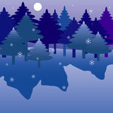 Winter night forest. Royalty Free Stock Images