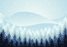 Winter night forest. falling snow in the air. christmas theme. new year weather. background stock photos