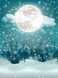 Winter night holiday landscape stock photography