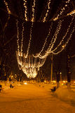 Winter night  illumination stock images