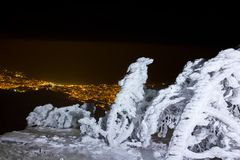 Winter night landscape. Winter snowbound forest above a night town Royalty Free Stock Photography