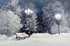 Winter night landscape- bench covered with snow among frosty winter trees and lights Royalty Free Stock Image