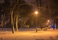 Winter night landscape- bench under trees and shining street lights falling snowflakes. Winter night landscape- bench under winter trees and shining street stock photo