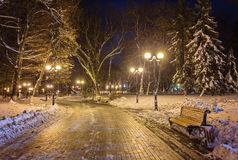 Winter night landscape- bench under trees and shining street lights falling snowflakes. Winter night landscape- bench under winter trees and shining street royalty free stock images