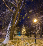 Winter night landscape- bench under trees and shining street lights falling snowflakes. Winter night landscape- bench under winter trees and shining street royalty free stock photography