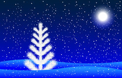 Winter night landscape with a fir-tree and moon Stock Photos