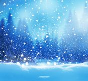 Winter night landscape with fir trees Royalty Free Stock Image
