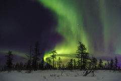 Winter night landscape with forest, road and polar light over the trees. Stock Photo