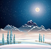 Winter night landscape Stock Photography