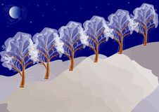 Winter night landscape with trees Stock Images