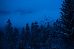 Winter night in the mountains Stock Photos