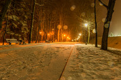 Winter night park alley view Stock Photo