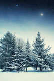 Winter night in the park. Elements of this image furnished by NASA Stock Photos
