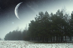 Winter night in the park. Elements of this image furnished by NASA Royalty Free Stock Image