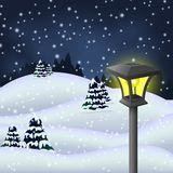 Winter night in the park with garden lamp Royalty Free Stock Images