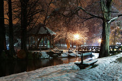 Winter night in the park Stock Image
