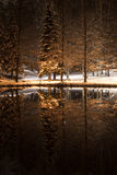 Winter night in a park Stock Photography