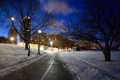 Winter Night Path Royalty Free Stock Photography