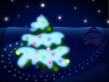 Winter night picture. Winter night (christmas) picture with spruces^ snowflakes and stars vector illustration