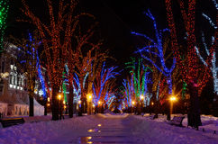 Winter night on Primorskii Boulevard,Odessa,ukraine Stock Photography