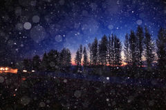 Winter night road. With snow background Royalty Free Stock Photo