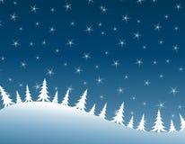Winter Night Row Of Christmas Trees Royalty Free Stock Photography