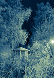 Winter night scene Stock Images