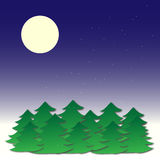 Winter night scene. With full moon, Christmas trees and snow Stock Image