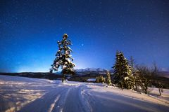 Winter night scenery. Winter road on mountain hills under blue night sky full of stars. Winter mountain nature stock image