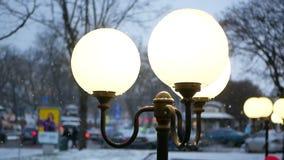 Winter snow falls park. Winter night snow falls in the park evening stock video