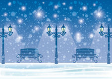 Winter night. Royalty Free Stock Image