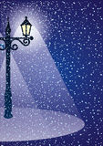 Winter night. Royalty Free Stock Images
