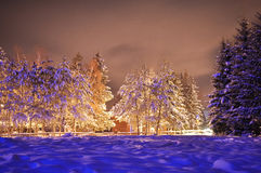 Winter night view landscape. Poiana Brasov stock images