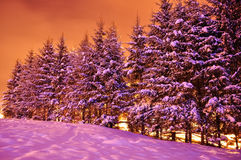 Winter night view landscape. Poiana Brasov royalty free stock photography
