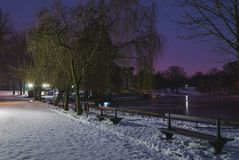 Winter night view Stock Images