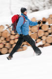 Winter nordic walking. Nordic walking in snow storm Stock Image