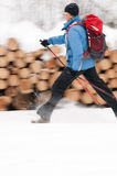 Winter nordic walking Royalty Free Stock Photography