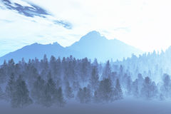 Winter Northern Night 2 Royalty Free Stock Photos