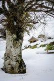 Winter in Norway (II) Royalty Free Stock Photos