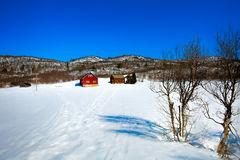 Winter at a Norwegian farm Royalty Free Stock Photos