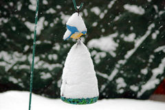 Winter is not for birds. Birdbath during a winter snow Stock Photos