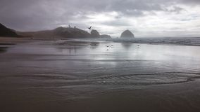 Winter ocean. Pacific city Oregon in winter Royalty Free Stock Photography