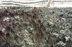 Pyeong Chang 2018 Winter Olympic Ski Jump Center. 2018 Winter Olympic Ski Jump Center Pyoeng Chnag Korea taken on 28.12.2016 Royalty Free Stock Photos